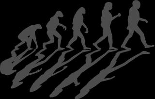 Evolution-1295256_960_720